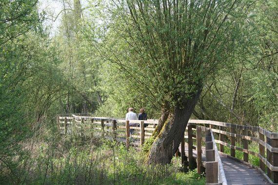 Reserve-naturelle-Boves